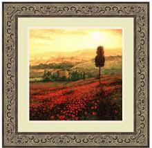 Amanti Art Shades of Poppies Framed Art Print by Steve Thoms